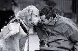 8_dog-love-photos
