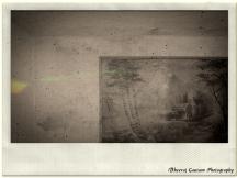 Painting beyond Pines