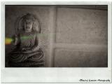 Buddha On The Wall