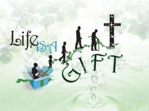 gift9