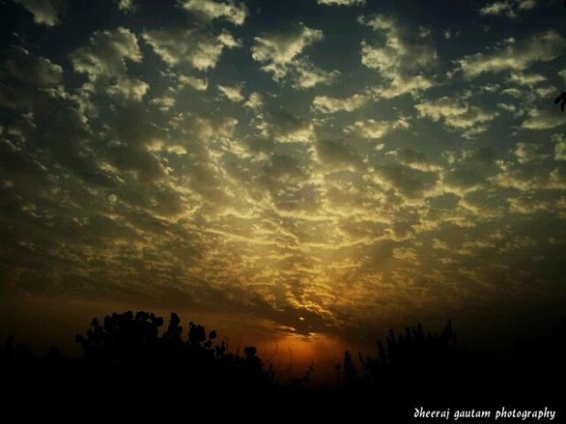 Morning sun 2